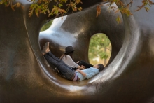 The relocation of the Henry Moore sculpture to the park provides opportunities for interaction within the quiet Grove.